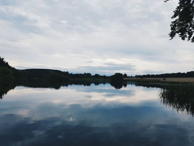 Pitfour Lake Aberdeenshire Scotland Lake Lakescape Mintlaw Pitfour Lake Serenity Peace Quiet EyeEmNewHere Lost In The Landscape