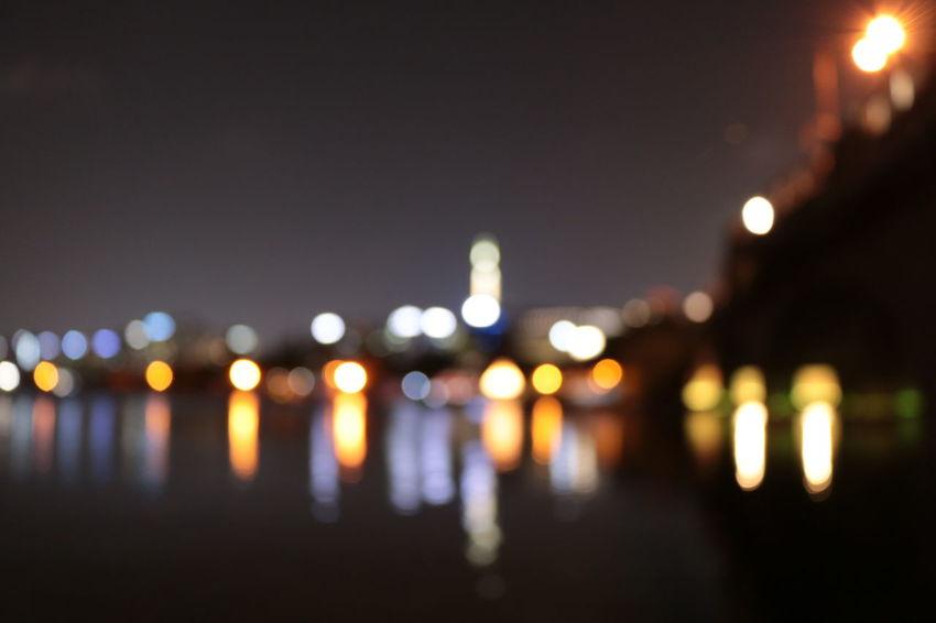 Ilsan Lake Park Focus On Foreground Illuminated Night