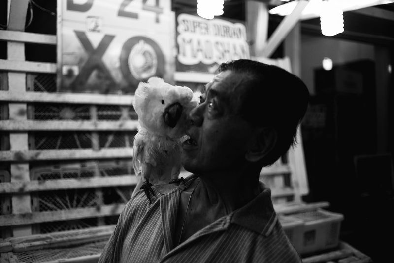 Capture The Moment Streetphotography Surprise Parrot Candid Photography Blackandwhite Singapore