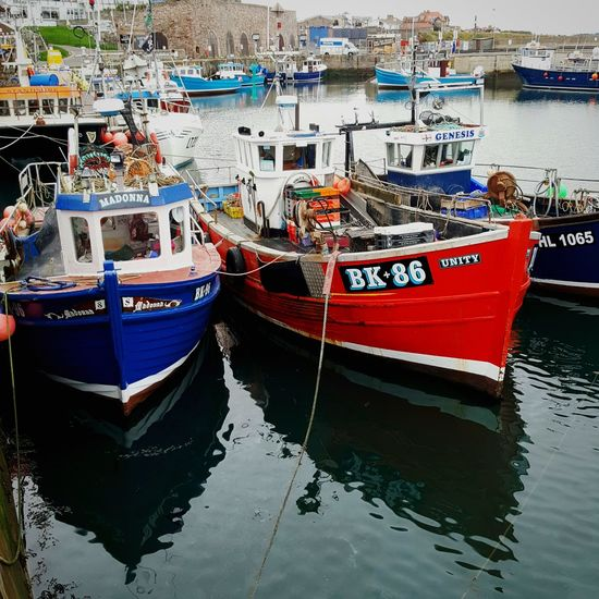 Fishing boats Nautical Vessel Mode Of Transport Moored Transportation Water Reflection Harbor Tourism Travel Destinations Day Outdoors No People Sea Waterfront Northumberland_uk Seahouses Harbour Life Harbour & Ships Harbourside Trawlers Fishing Boats Fishing Boat Transportation Seahouses Northumberland Uk