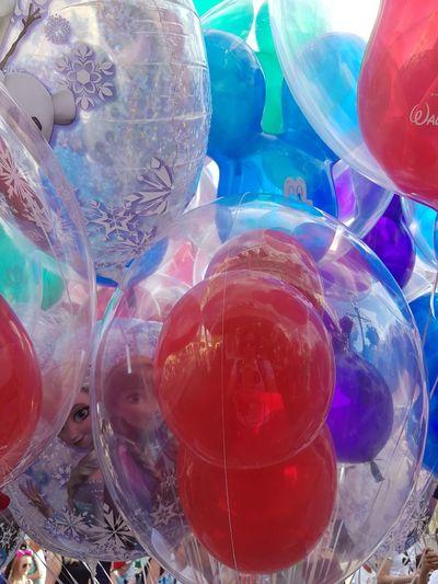 May,2018 - Animal Kingdom Travel Lovethisplace Colors Life Balloon Celebration