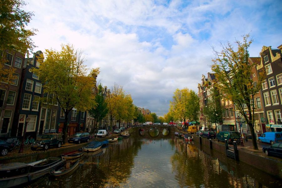 Amsterdam River Trees Bridge Boats Cars Leafs James Young