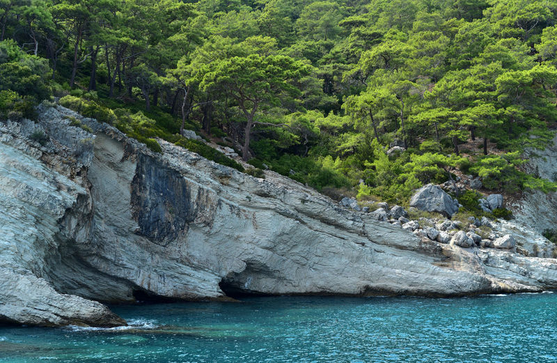 Mediterrean Sea Turkey Beauty In Nature Cliff Day Forest Kemer Nature No People Plant Rock Rock - Object Scenics - Nature Sea Tranquility Tree Water Waterfront
