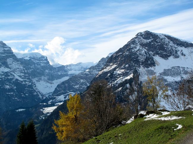 Beauty In Nature Day Mountain Mountain Range Nature No People Outdoors Scenics Sky Snow Tranquil Scene Tranquility Tree