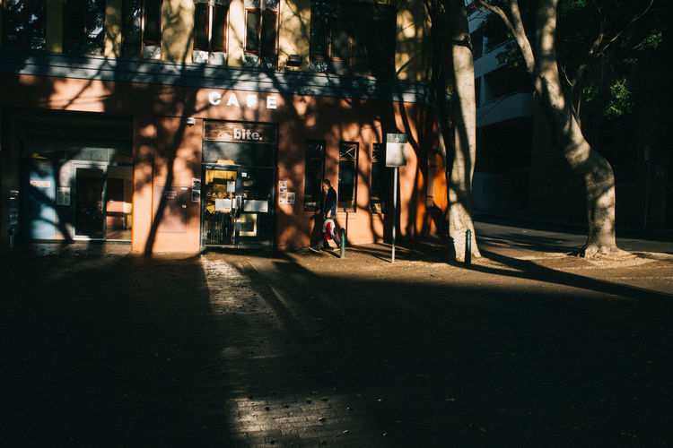Sydney, Australia. The light in this city is beautiful during the golden hour. Architecture City Nature Night No People Outdoors Road Shadow Tree The Street Photographer - 2017 EyeEm Awards