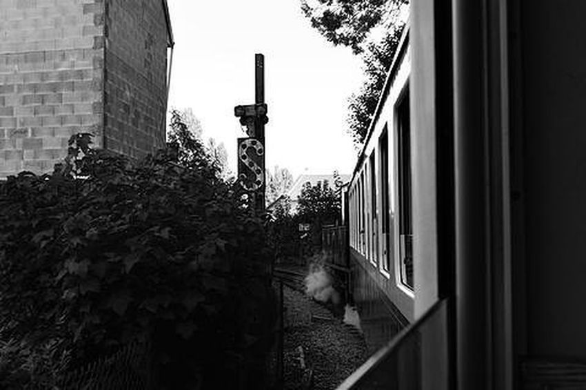 Throwback to when I went on a steam train in France 🚂 More photos are on my website , link in Bio 😝 TBT  Steamtrain Steam Train Throwbackthursdays Blackandwhite Photography France Summer