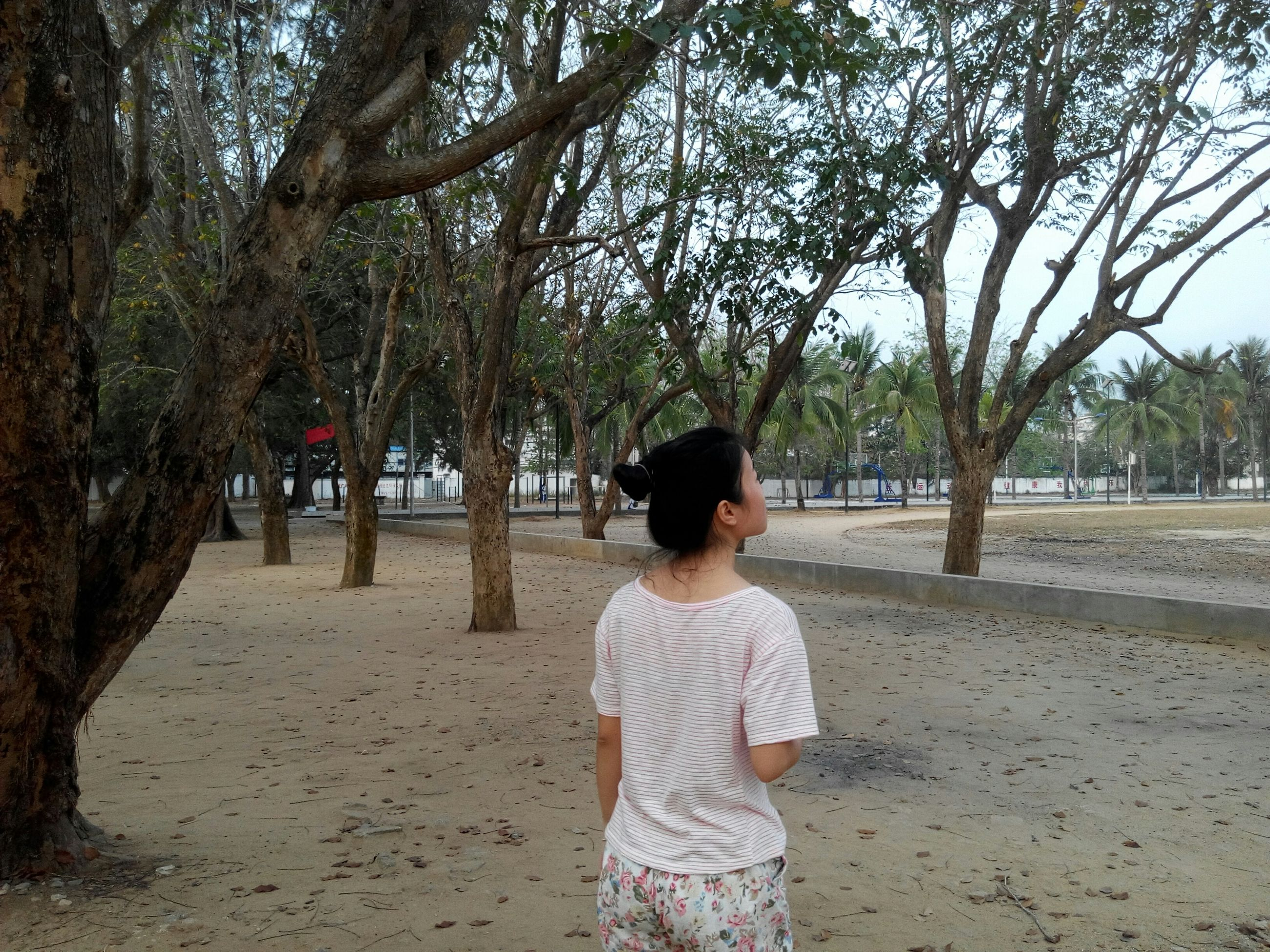 tree, rear view, lifestyles, leisure activity, casual clothing, childhood, park - man made space, full length, tree trunk, girls, boys, elementary age, day, branch, person, walking, park, sitting