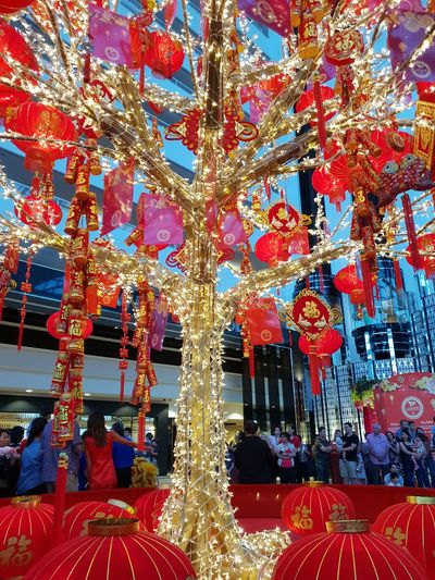 Chinese New Year 2019 Crown Casino Perth Celebration Tree Illuminated Hanging Multi Colored Red Lantern Celebration