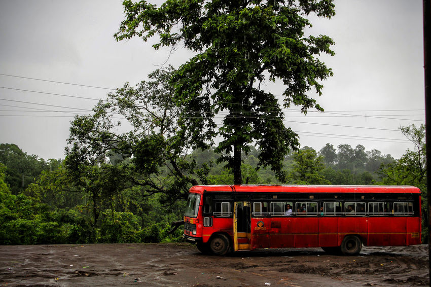 Tree Transportation Mode Of Transport Land Vehicle Outdoors Day Nature Sky No People Red Bus Red Color Rainy Day Muddy