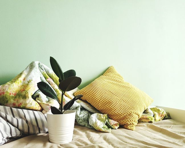 Cozy Place Travelphotography Green Greenery Green Leaves EyeEm Selects Freshness Sommergefühle Growth No People Tranquility Scenics Nature Cozy At Home Leaf Cozy Plant Bed Time Bedroom Pillows Bed Pillow Yellow Multi Colored Close-up