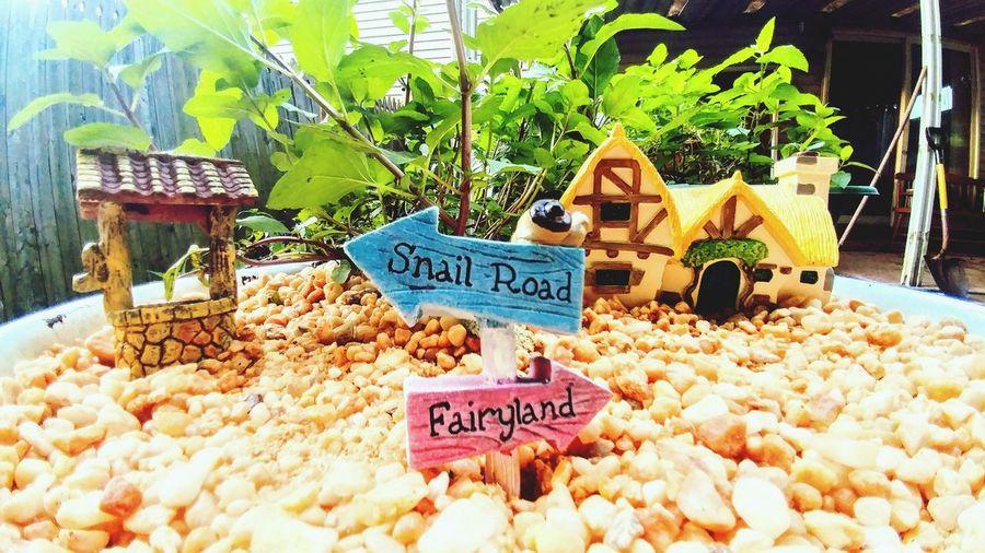 Mini Gnome_home Cute Plants Garden Mint Text Communication
