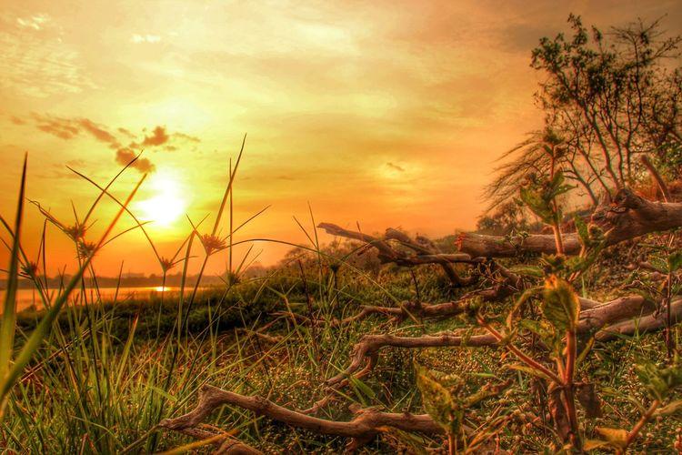 Sunrise_sunsets_aroundworld Landscape