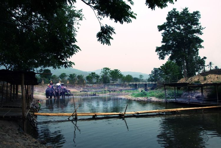 Holiday X Beauty In Nature Canal Day Elephant ♥ Idyllic Lake Nature Outdoors Ridding Elephant Rippled Tranquil Scene Tranquility Vacation Time Water