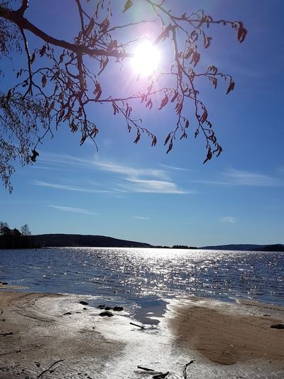 Sunny Day Walk At The Beach Lakeview Spring Is Coming  Fryken Blue Sky March 2017 Sunshine Blue Water Blue Sky Lysvik Värmland Sweden Swedish Nature