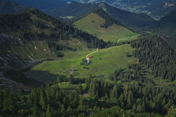 Raineralm rottach-egern small farm with nice view. high angle view of trees on field