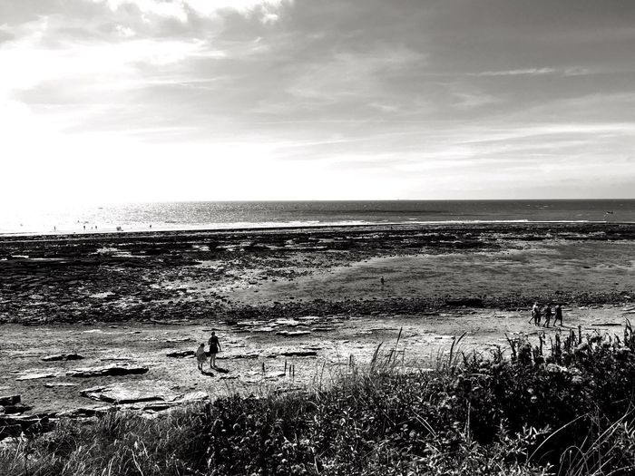 Audresselles, Côte d'Opale- Love those places that were able to be kept wild France Côte D'Opale Opale Coast Audresselles Lenkacam ShotOnIphone IPhone Black And White Photography Black & White Black And White Plage Sea Water Horizon Over Water Beach Nature Sky Tranquility Scenics Tranquil Scene Outdoors Beauty In Nature