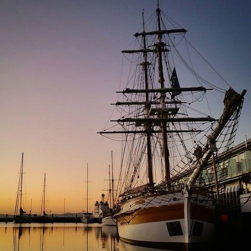Ladynelson Sunrise Hobart