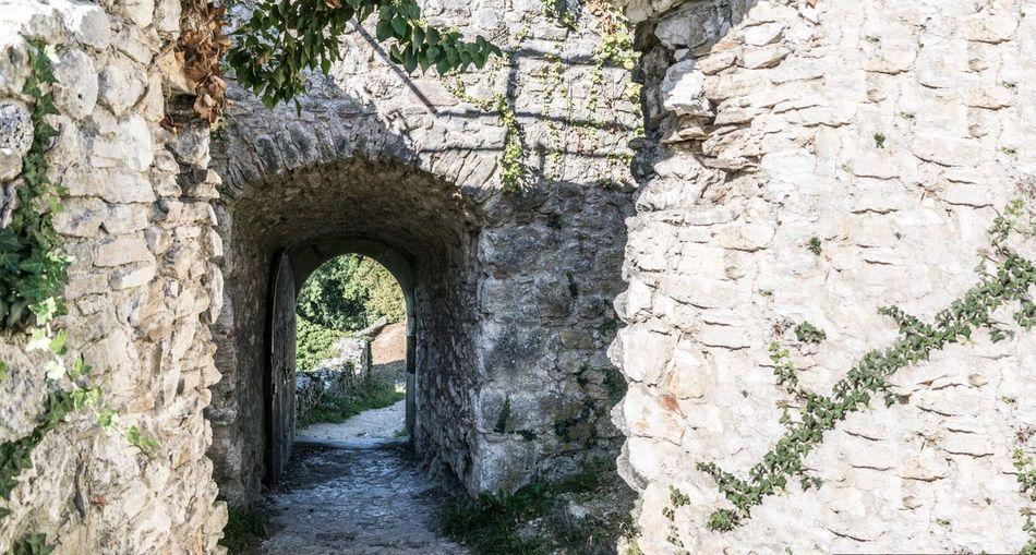 Door Ruin Exit Nature Switzerland Dornach Dorneck Castle Wall Plant