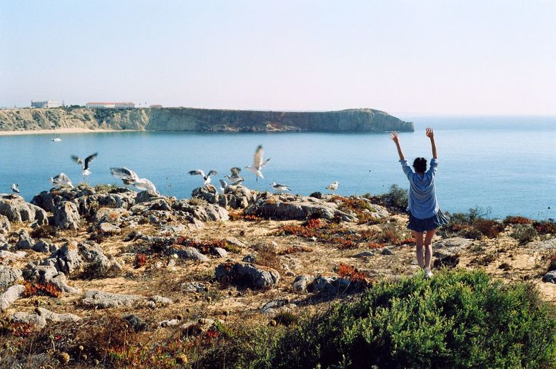 Rear view of woman with arms raised standing by birds flying at beach