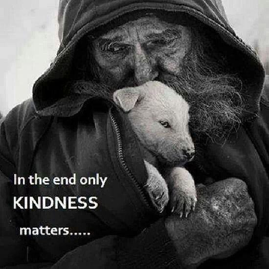 Our greatest strength lies in the gentleness and tenderness of our heart. Rumi