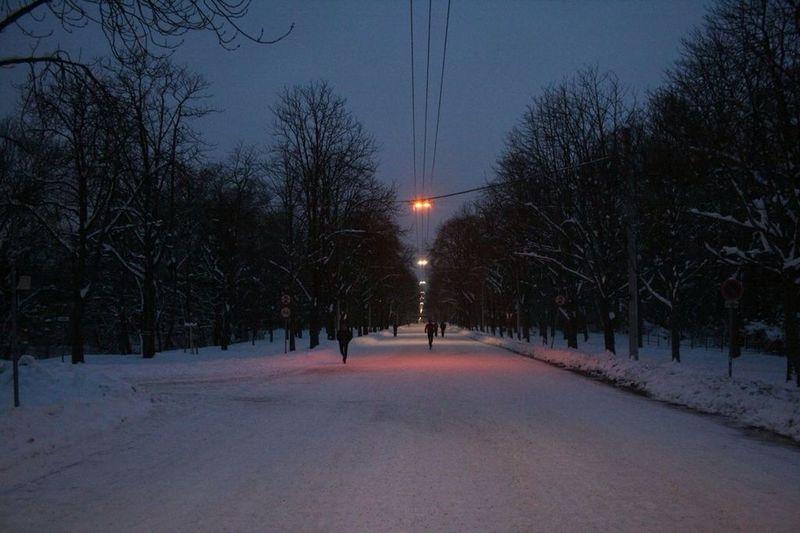 Prater Hauptallee in snow