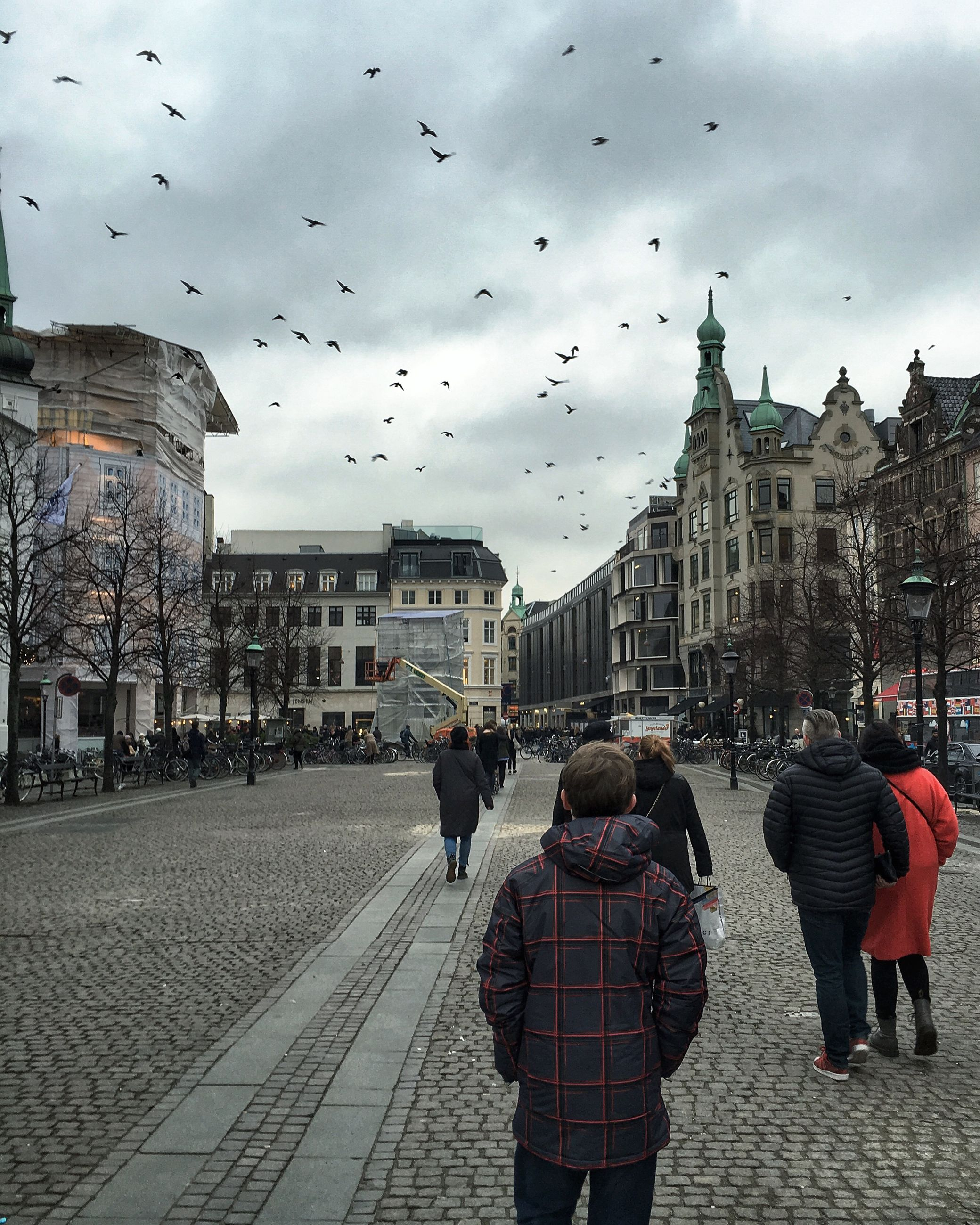 building exterior, architecture, built structure, sky, lifestyles, men, person, walking, large group of people, bird, leisure activity, city, cloud - sky, flying, street, city life, full length, rear view
