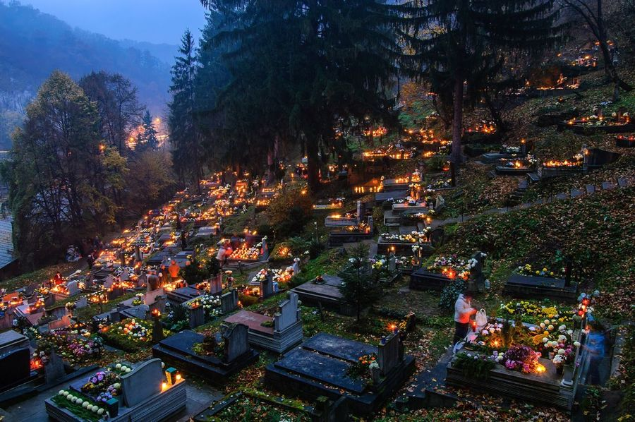 Tree High Angle View Outdoors Halloween Candles Candlelight Sheen Group Of People Growth Illuminated Food Architecture Nature Crowd People Night Adult November 1th Graveyard Beauty Grave Shining Tomb Trees