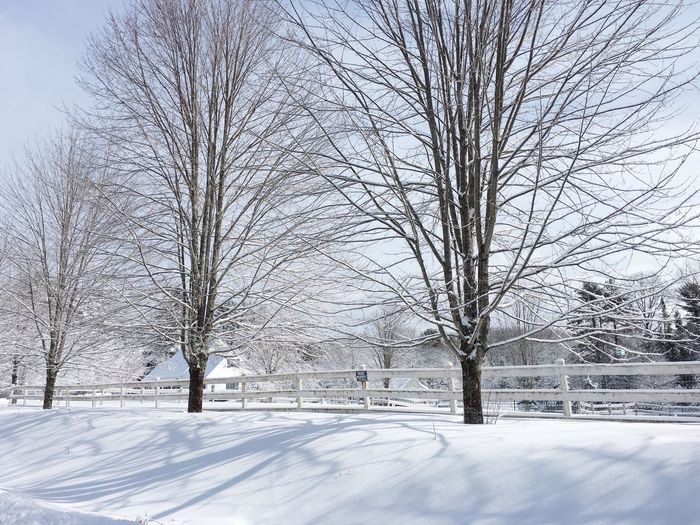 Outdoors Snow Winter White Color Cold Temperature Beauty In Nature Tranquil Scene Maine
