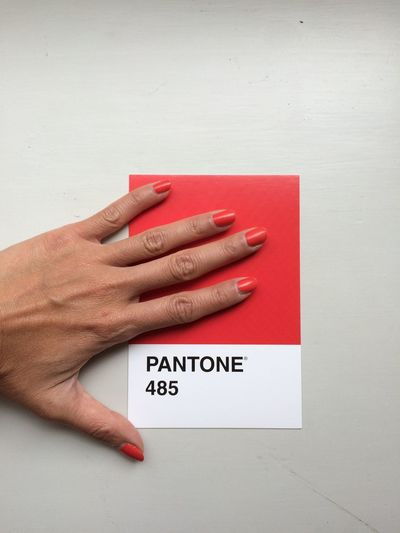 Colors Colours Contemporary Art Nail Polish Pantone 485 Pantone Colors Postcard Color Color Palette Color Photography Colormatch Colormatching Colour Colour Check Colour Match Colour Of Life Colour Palette Communication Human Body Part Human Hand Matching Colors Nail Varnish Pantone Pantone Red Text