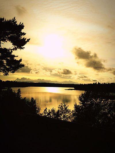 Swedish Summer Jag älskar Sverige Summertime