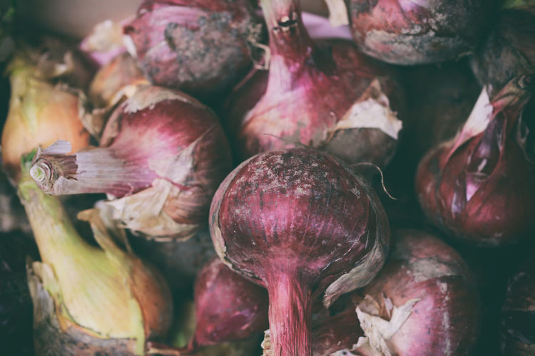 Close-up of onions at home