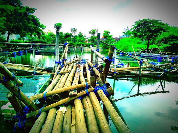 Bamboo bridge Week On Eyeem Indonesia_photography Indonesia_allshots Indonesian Street (Mobile) Photographie Learn & Shoot: Working To A Brief Photographic Memory
