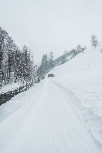 Snow Cold Temperature Winter Tree Covering Beauty In Nature Transportation Nature Scenics - Nature White Color Road No People Plant Direction Day The Way Forward Sky Tranquility Environment Snowing Outdoors Extreme Weather Blizzard Snowcapped Mountain Winter Wonderland