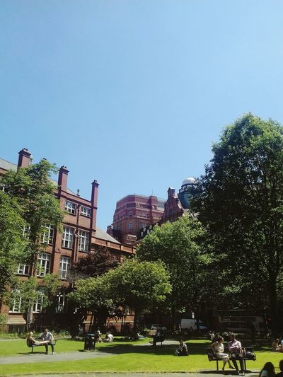 EyeEm Selects Tree Outdoors Architecture Sky Nature City Life Clear Sky City Buildings Manchester City Centre Travel Destinations Multiple Buildings People Manchester UK Parklife Parkbench Gay Village Summer Relaxing In The Sun manchester 😊