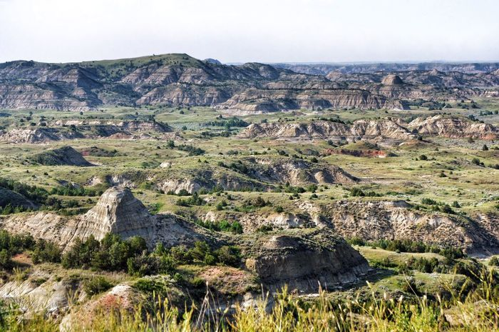 Badlands of North Dakota North Dakota North Dakota Badlands Badlands Landscape_photography Landscape_Collection Landscape Sky Environment Landscape Plant Nature Beauty In Nature Tranquility Tranquil Scene Day No People Scenics - Nature Land Outdoors Sunlight