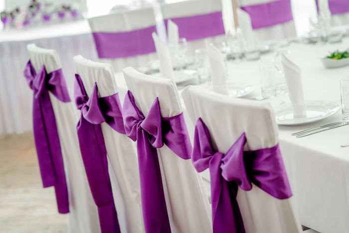 Close-up of white wedding chairs with purple ribbon Banquet Bow Catering Celebration Chairs Close-up Covers Event Food And Drink Holiday Indoors  No People Nobody Occasion Place Setting Restaurant Ribbon Romantic Silky Style Table Arrangements Wedding Wedding Reception White And Purple White And Violet