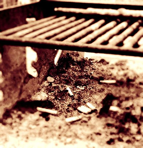 All Things That Burn Whats Left Behind EyeEm Nature Lover Newoneyeem EyeEmNewHere Georgia Selective Focus No People Close-up Day Outdoors Closeupphotography Ashes Litter Box