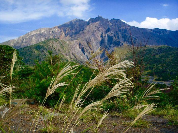 Sakurajima Volcano Mountain Beauty In Nature Plant Sky Scenics - Nature Growth Tranquility Cloud - Sky Tranquil Scene Mountain Range Day Landscape No People Environment Idyllic Non-urban Scene Outdoors