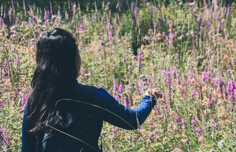 Rear view of woman standing on purple flowering plants