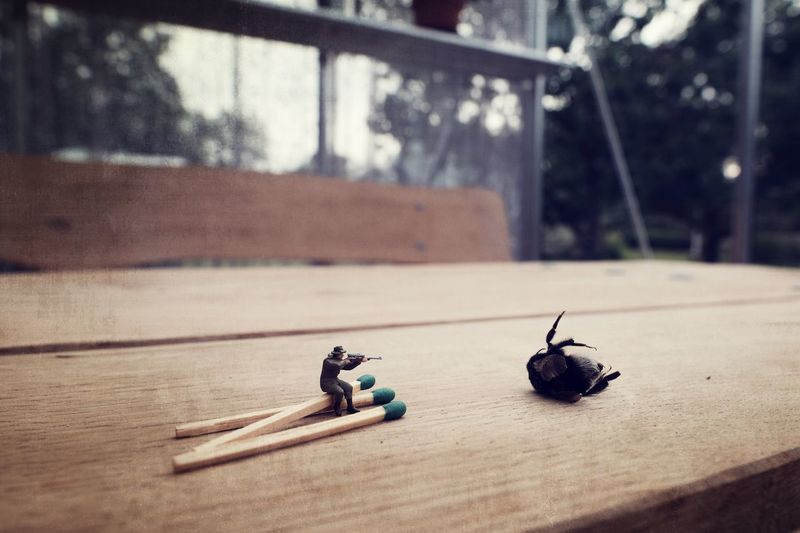 Toy Soldier On Matchsticks Shooting Dead Insect On Table