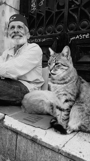 Pets Domestic Animals Animal Themes Domestic Cat Cat One Animal Mammal Looking Away Relaxation Sitting Feline Animal Head  Curiosity Day Zoology Animal EyeEm Best Shots City Life Girl Hello World Streetphotography Taking Photos Outdoors Person Black And White