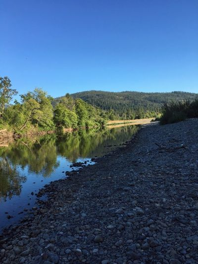 Ripple Effect Oregon Hideaways Peaceful Quiet Relaxing Meditation Walking Around Riverscape Tubing Josephine County Bread & Butter Water Lake No People Outdoors Nature Tree Clear Sky Scenics Beauty In Nature Sky Day