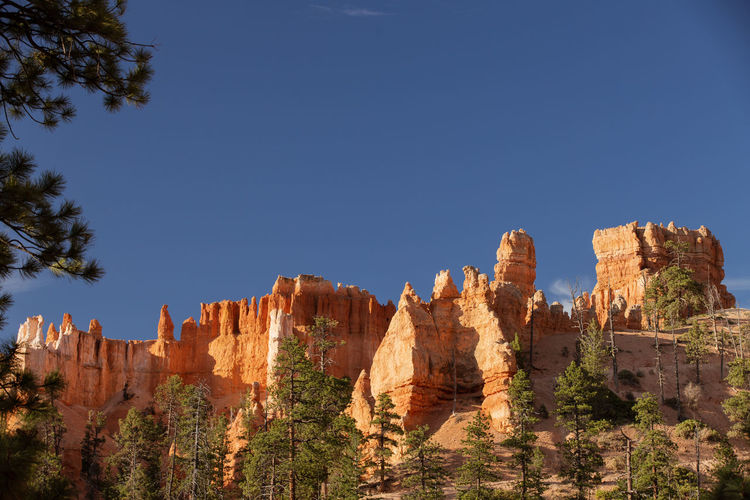 shiny rocks of Bryce Canyon Sky Beauty In Nature Nature Tranquil Scene No People Tranquility Outdoors Bryce Canyon Rock Formation Rock Rock - Object Solid Travel Destinations Travel Scenics - Nature Clear Sky Non-urban Scene Geology Tree Physical Geography Blue Eroded Climate Formation Arid Climate