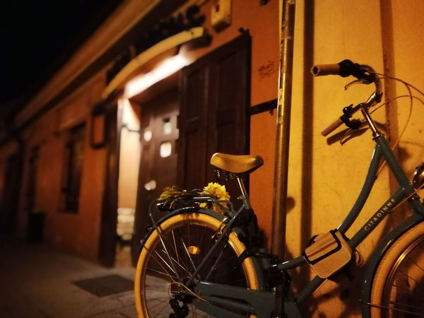 Bike, flowers & pub Flowers Pub Leftbehind Lonely Bicycle Stationary Land Vehicle Architecture Building Exterior Built Structure Close-up HUAWEI Photo Award: After Dark