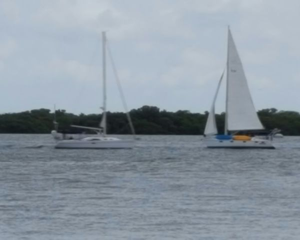 Sailboats passing Sailboats Passing By Sails Up Sails Down Powered By Nature Wind Power Powered By Motor Florida Life