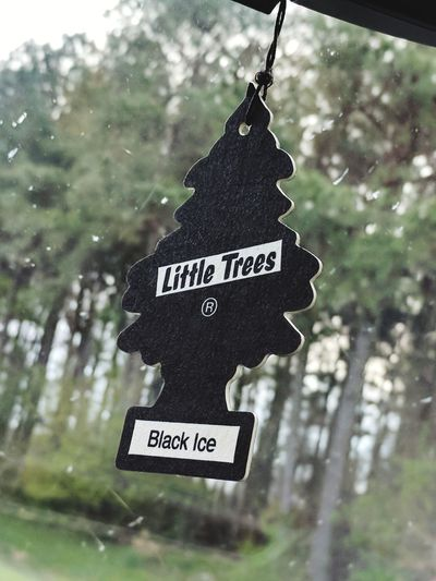 little trees Air Freshener Little Blackandwhite Road Peace Dramatic Motion Fun Lighting Tree Hanging Communication Text Close-up Capital Letter Information Sign Board