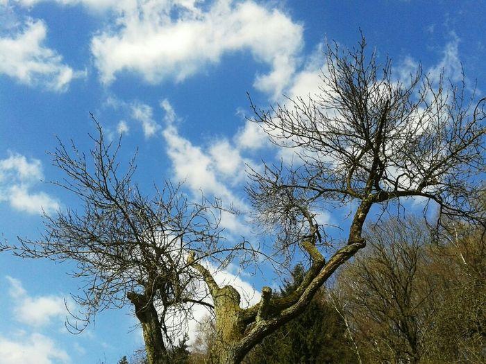 Landscape Landschaft Sky And Clouds Nature_collection