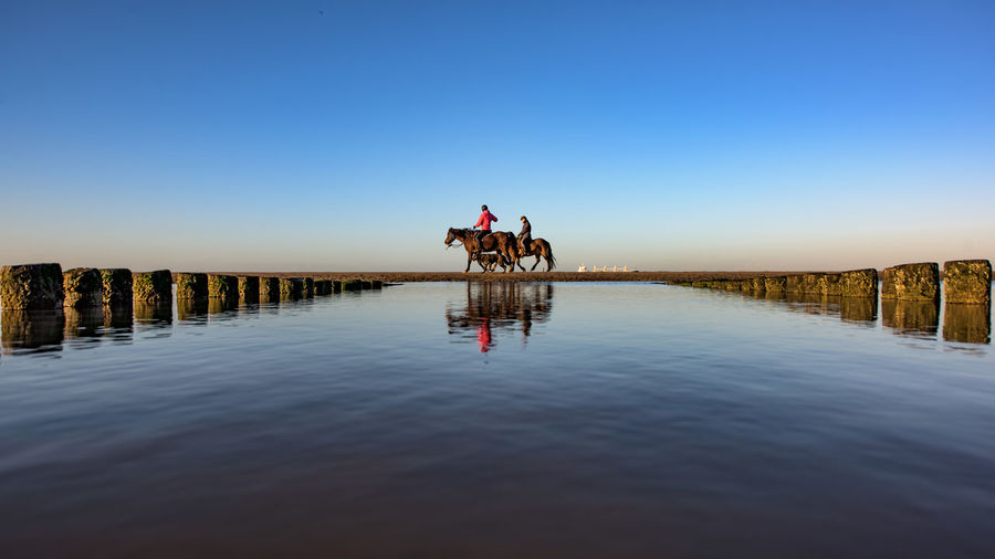 People riding horses on pier amidst sea against clear sky