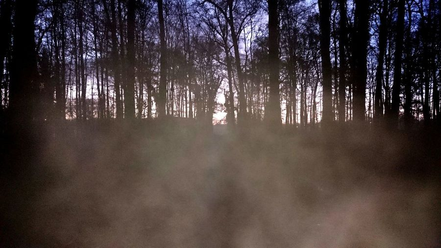 nebel fog Fog