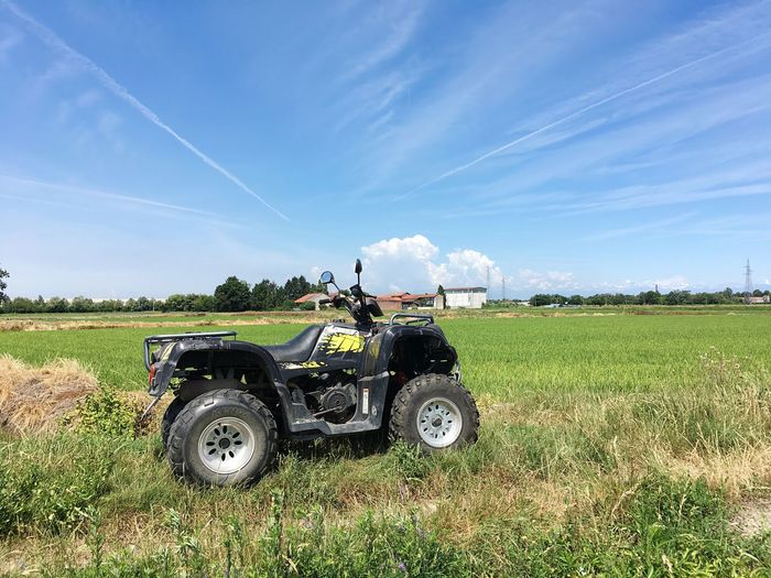 Quad Rice Paddy Rice Field Rice Field Field Land Sky Mode Of Transportation Land Vehicle Agricultural Machinery Transportation Plant Agriculture Nature Day Growth Tractor Farm Landscape